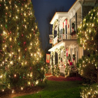 QCT Holiday Trips 2019 #mcadenville #christmas #queencitytours